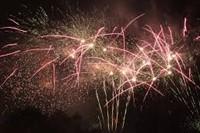 Ally Pally's Firework Festival