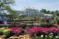 National Flower Show at Hylands House