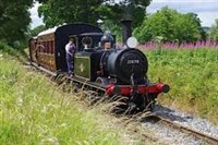 Tenterden Railway and cream tea/ploughmans