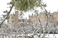 Penshurst Place Behind the Scenes Tour and lunch